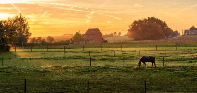 Dagaanbieding: Verblijf 2, 3 of 4 dagen in Oost-Vlaanderen tussen Sluis en Brugge incl. ontbijt en gratis fietsroutes!