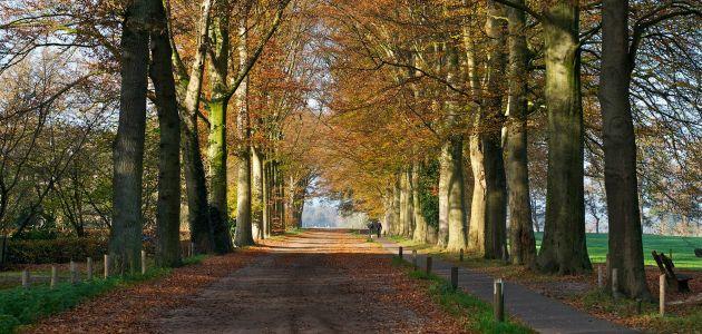 Dagaanbieding: 3 dagen top beoordeeld hotel in het Overijsselse Vechtdal bij Zwolle