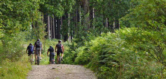 Dagaanbieding: 3 dagen in de Belgische Ardennen o.b.v halfpension