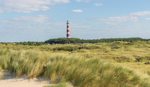 Weekend, week of midweek in een strandchalet op Ameland nabij Hollum en Nes