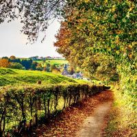 3 dagen in 4*-hotel tussen de heuvels van Zuid-Limburg nabij Valkenburg incl. wilddiner en herfstwandeling