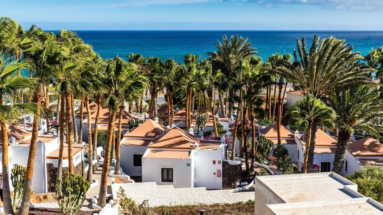 Caleta Playa Apartments