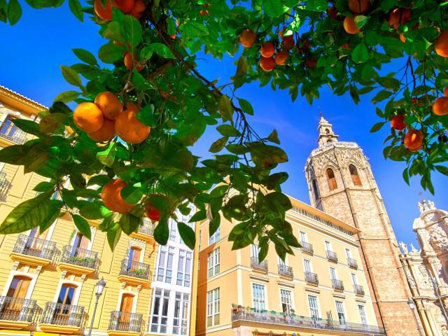 4*-Stedentrip naar <b>Valencia</b> incl. vlucht en ontbijt