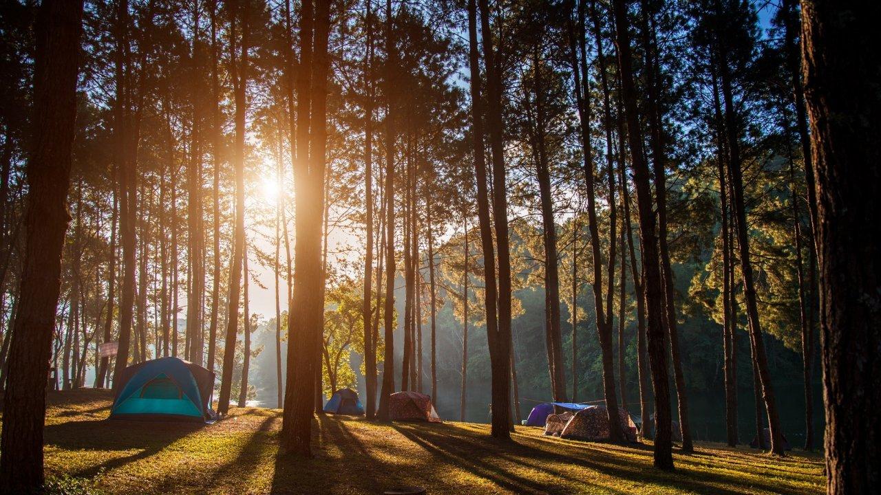 Camping Niva