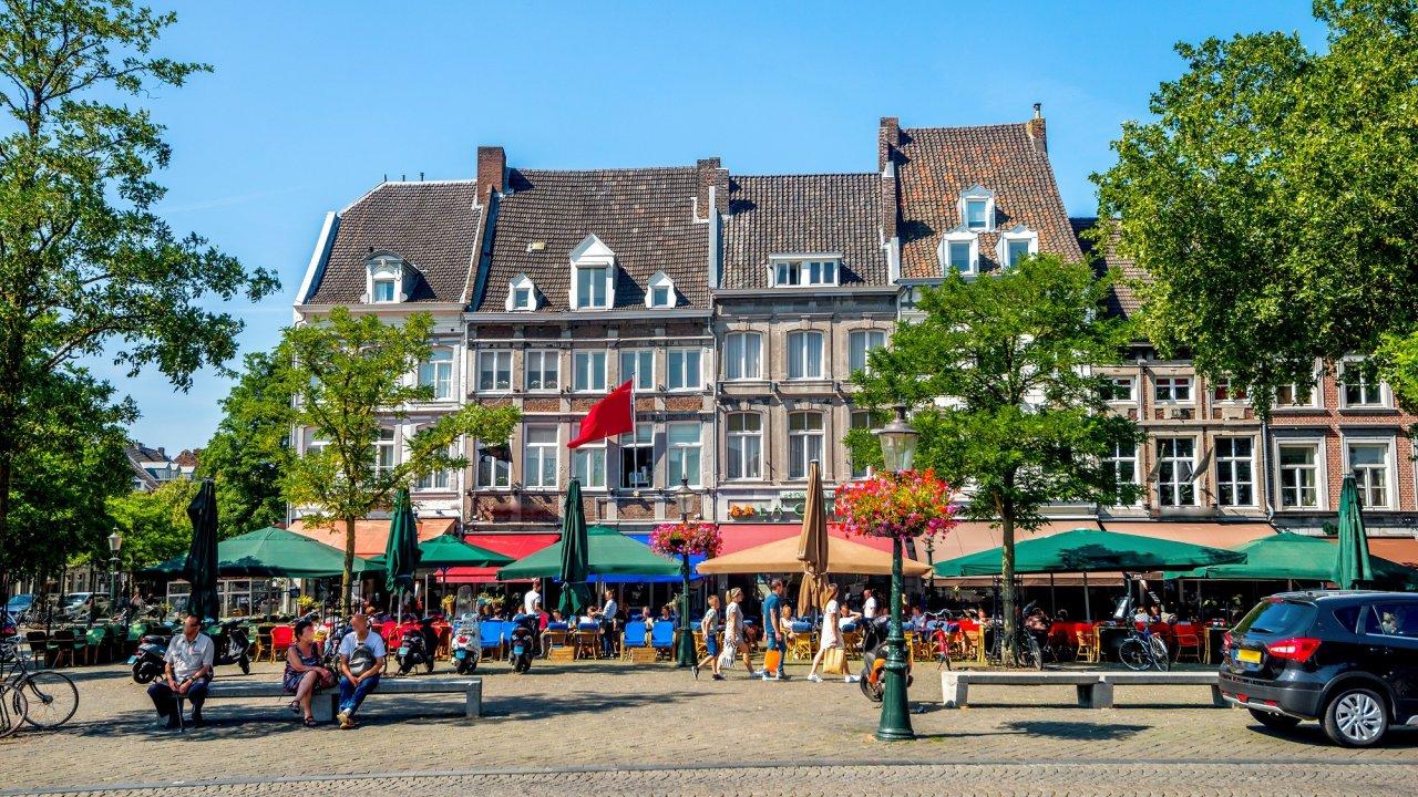 The Green Elephant - Nederland - Limburg - Maastricht