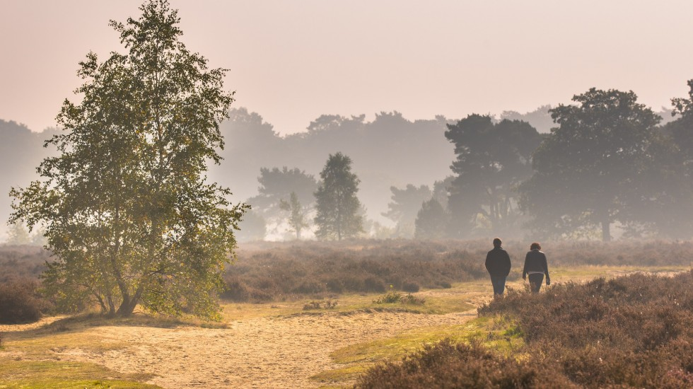 2 of 3 dagen 4*-hotel op de Veluwe tussen Harderwijk en Nunspeet incl. ontbijt!