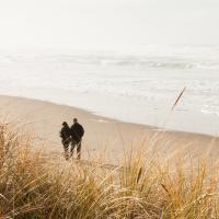 3 dagen in <b>Renesse</b> op loopafstand van het strand incl. 3-gangendiner!