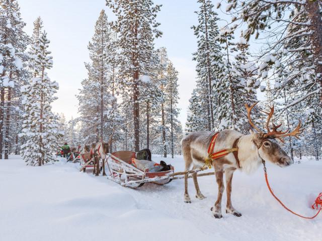 Geniet van een onvergetelijke reis naar <b>Fins Lapland</b> incl. ontbijt, excursies en meer