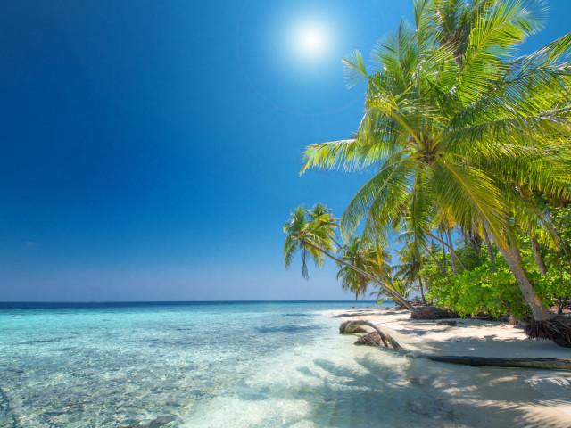 Luxe 4*-resort bij<b> Willemstad</b> op het tropische <b>Curaçao</b> incl. vlucht en transfer